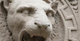 Concrete animal face sculpture